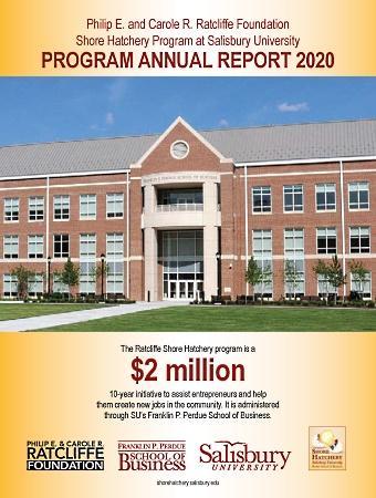 SH-annual-report-2020-image.jpg