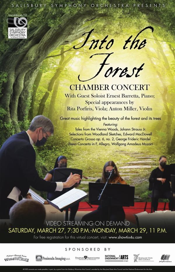 Salisbury Symphony Orchestra Into The Forest Flyer