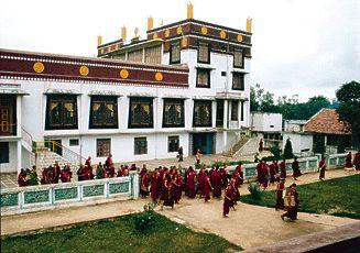 Drepung Loseling Monastery-in-exile in India