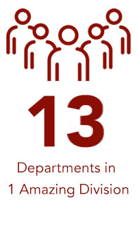13 Departments in 1 Amazing Division text and icon