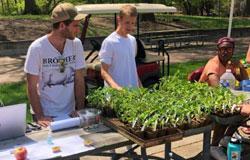 Student working on garden