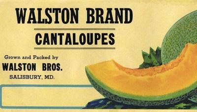 Walston Brand Cantaloupes poster