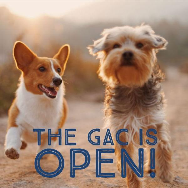 """Two dogs running side by side with text """"The GAC is Open!"""""""